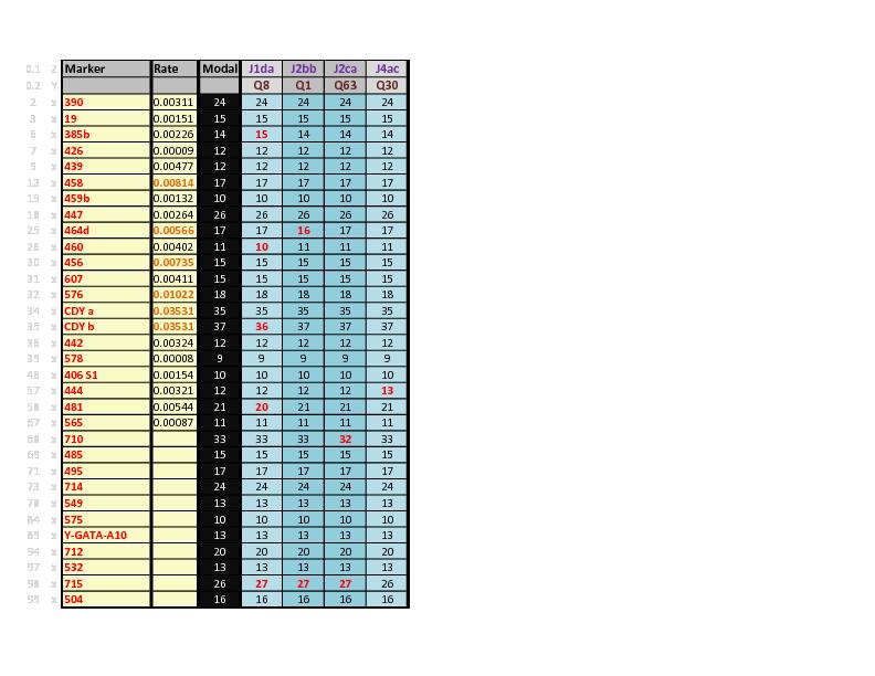 Q-Males DNA Chart.pdf